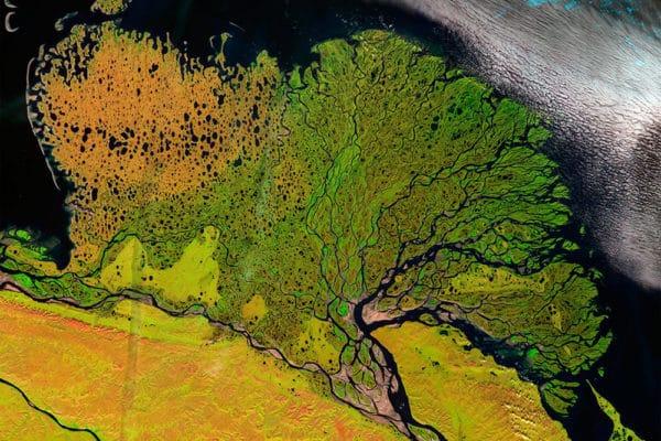 Дельта реки Лена