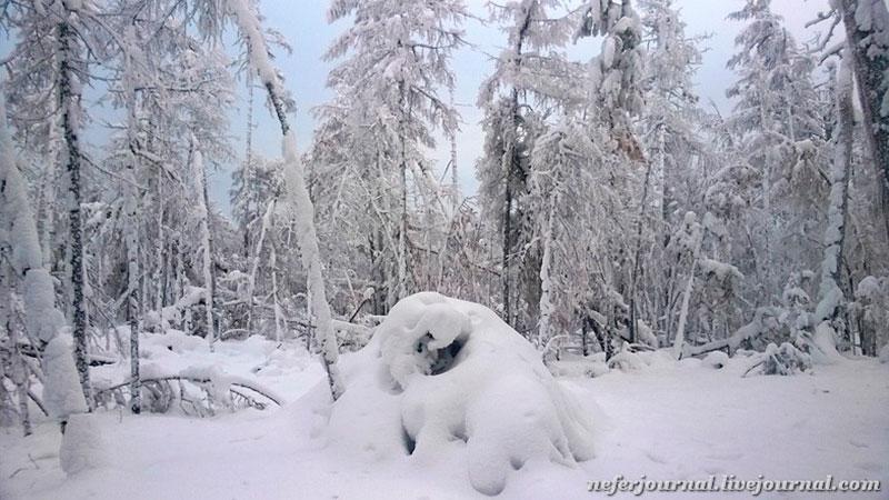 Снег на Ленских столбах